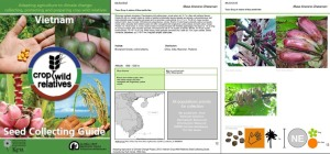 Seed-collecting-guide-Musa